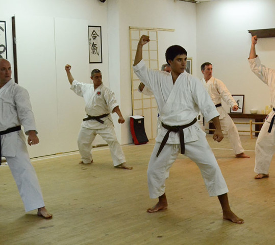 空手道 / Karatedo